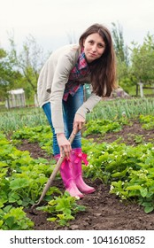 Gardener planting greens at back yard - young woman working in the garden