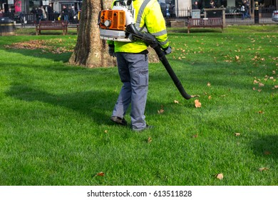 Gardener public clearing leaves with a backpack leaf blower engine vacuum