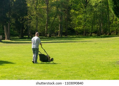 Gardener pushing a powered lawn mower across a large expanse of grass with trees in background