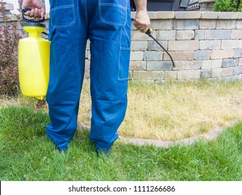 Gardener spraying a patch of grass with weed killer using a portable sprayer viewed closeup showing his legs, hands and the equipment