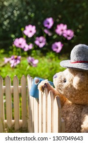 Gardener teddy bear wear traditional farmer hat, looking over garden fence with old rusty pot on top, flowers in bloom at background