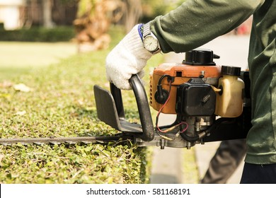 the gardener is trimming branches