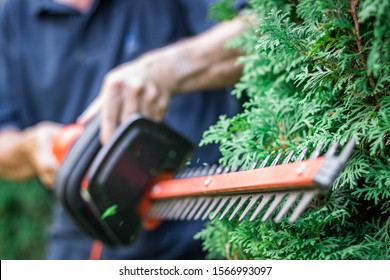 Gardener trimming overgrown green bush by electric hedge clippers. Selective focus, motion blur. Man cutting thuja in garden. Gardening at backyard. Unrecognizable person