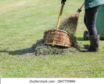 gardener use natural broom and dustpan to sweep grass leaves after lawn trimming or female garden keeper hold broomstick of coconut leaf broom to cleanup ground of green park