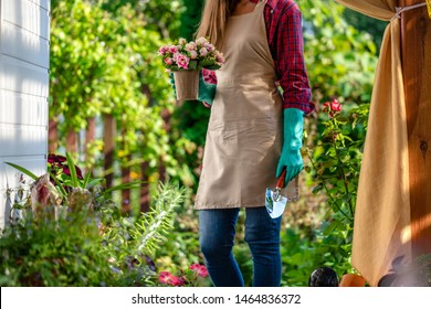 Gardener woman plants flowers in home garden with shovel. Gardening and floriculture. Flower care