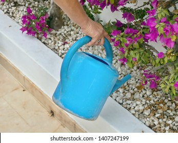 A gardener at work  she pours the flowerbeds with a blue watering can, she is wearing work clothes, lateral back view.