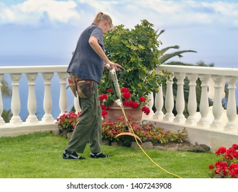 A gardener works stooping over a geranium bed and plucks weeds, she is wearing work clothes, lateral back view.