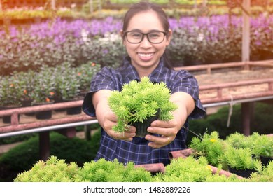 Gardener young woman at a nursery in greenhouse holding a pot of growing seedlings in her hands for sale.