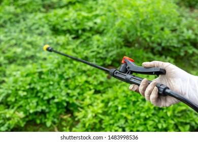 Gardeners are spraying wrist cuffs at close range.
