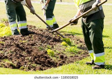 gardeners working with hand  tools in municipal garden