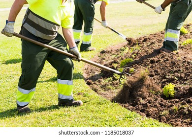 gardeners working with hand  tools in municipal garden