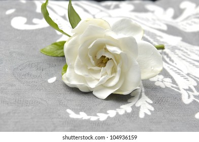 Gardenia Blossom on lace texture