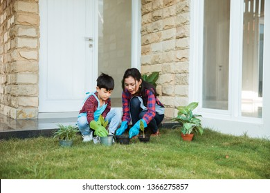 gardening activity mother and son in front of their house. happy parent and son planting a tree
