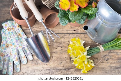 gardening arrangement with tools and flowerpot on a wooden background