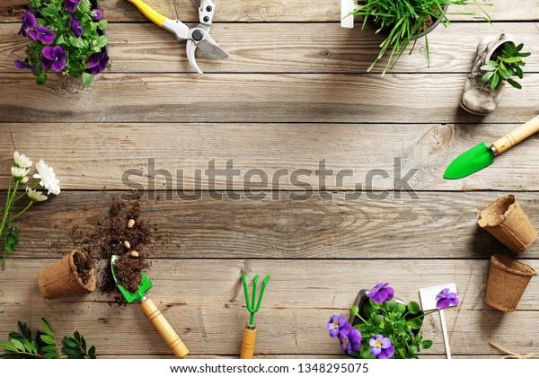 Gardening Border Composition Various Flowers Plant Stock Photo (Edit