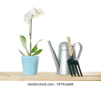 Gardening composition with orchid flower and watering can isolated over white background