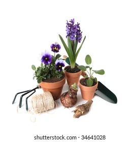 Gardening Essentials With Plants and Tools on White Background