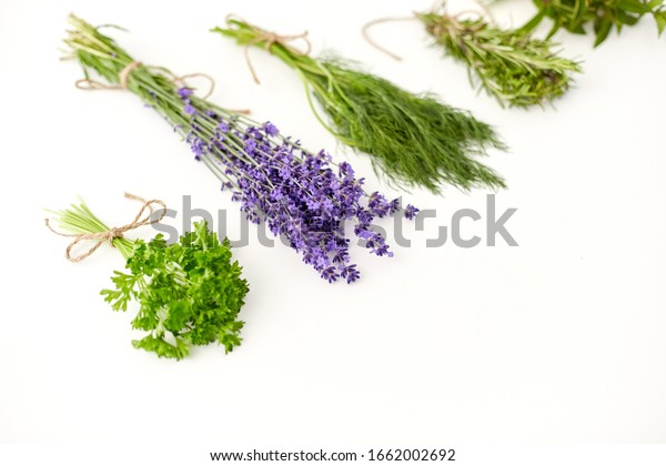 gardening, ethnoscience and organic concept - bunches of greens, spices or medicinal herbs on white background