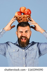 Gardening and fall crops concept. Guy presents homegrown harvest. Man with beard holds wicker bowl with fruit isolated on blue background. Farmer with flirty face holds red apples on head