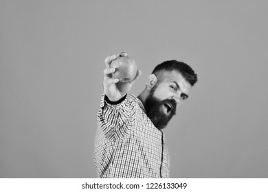 Gardening and fall crops concept. Guy presents homegrown harvest. Man with beard holds red apple isolated on yellow background, copy space. Farmer with excited face puts fresh fruit forward, close up.