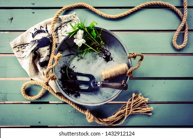 Gardening flat lay. Set of rustic, old, vintage gardening tools, metal tray, marine rope and fresh green seedlings on mint green wooden table