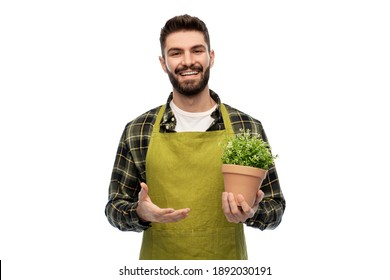 gardening, floristry and people concept - happy smiling male gardener in apron with flower in pot over white background
