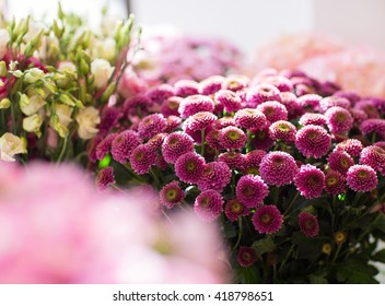 gardening, floristry, sale, holidays and flora concept - close up of beautiful chrysanthemums at flower shop