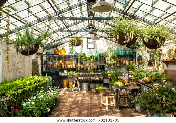 Gardening - greenhouse interior