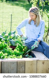 Gardening - Happy woman is proud of her own raised bed