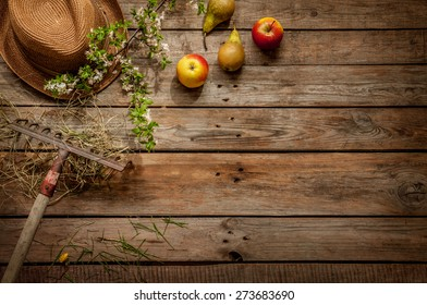 Gardening - hat, apples, pears, rake, hay and blooming tree branch on vintage rustic wood. Background layout with free text space.
