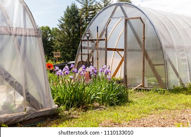 Gardening hoop houses at a community garden with flowers on a sunny summer day.