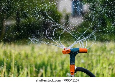 Gardening irrigation system watering green plants. Rotation sprinkler and splash water drops. Agricultural background with limited depth of field.