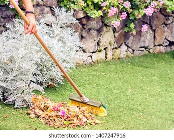 Gardening, many leaves and flowers lie in the meadow and are swept up with a hard broom to see only the hands of the model