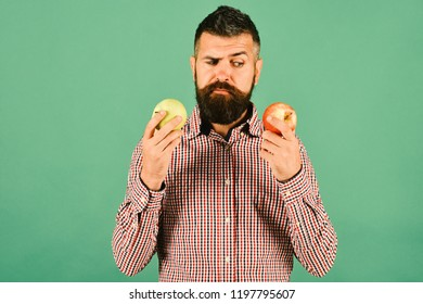 Gardening and product choice concept. Man with beard holds red and green apples isolated on green background. Guy presents homegrown harvest. Farmer with suspicious face holds different fresh fruit