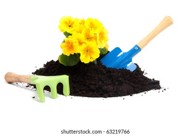 gardening with soil, tools and plants over white background