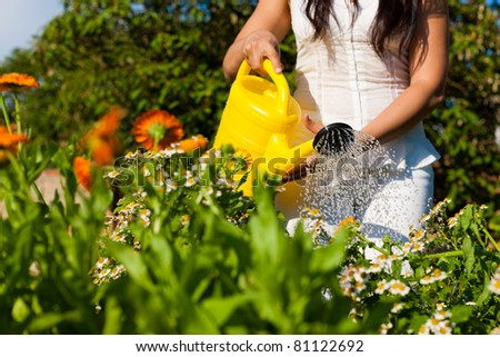 Gardening in summer - woman watering flowers with a yellow watering can