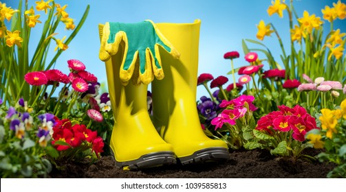 Gardening tool and flower in garden