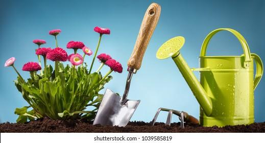 Gardening tool and flower in garden