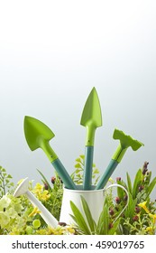 gardening tools in flower field