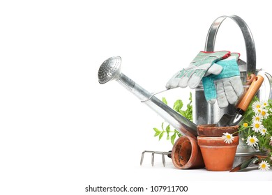 Gardening tools and flowers isolated on white with copy space.