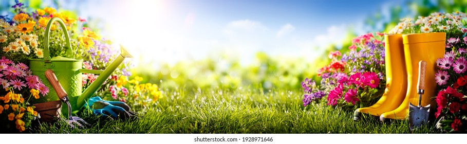 Gardening tools and flowers on meadow at sunny day - Shutterstock ID 1928971646