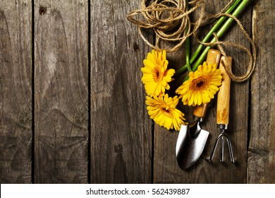 Gardening tools, flowers, rope, brushes and gardening gloves on vintage wooden table. Spring, summer or garden concept background with free text space.