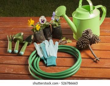 gardening tools in the garden