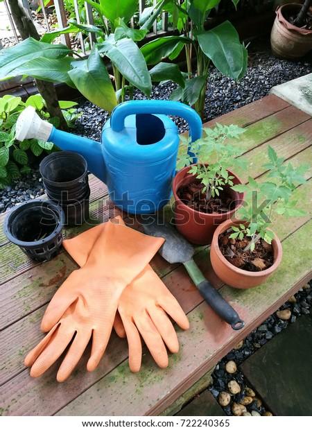 Peachy Gardening Tools Gardening Gloves Plastic Planting Stock Pdpeps Interior Chair Design Pdpepsorg
