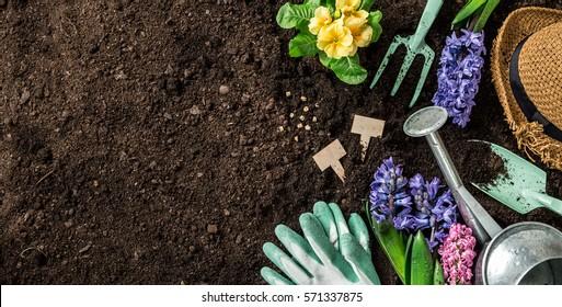 Gartenwerkzeuge, Hyazinthen, Tränkanlagen und Strohhut auf Bodenhintergrund. Das Konzept des Frühlings Garden funktioniert. Horizontales Layout mit frei aufgenommenem Textraum von oben (Draufsicht, flache Lage).