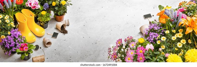 Gardening Tools on Shale Background. Spring Garden Works Concept