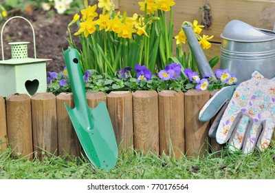 gardening tools put on wooden border next to daffodils and viola