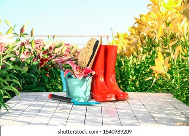 Gardening tools, rubber boots and fresh lily on white wooden table in flower field