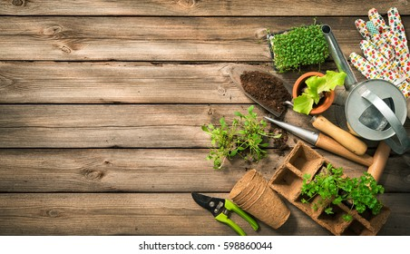 Gardening tools, seeds and soil on wooden table. Spring in the garden