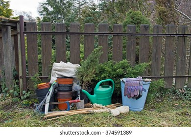 Gardening Tools with Small Tree Plants on Wooden Background